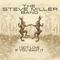 The Steve Miller Band - I Got Love If You Want It