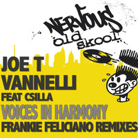 Joe T Vannelli - Voices In Harmony feat. Csilla
