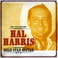 Hal Harris - Gold Star Guitar