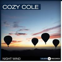 Cozy Cole - Night Wind