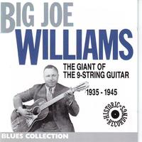 Big Joe Williams - Joe Williams 1935-1945: The Giant of the 9 Strings Guitar