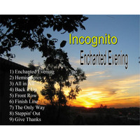 Incognito - Enchanted Evening