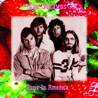 The Strawbs - Alive In America