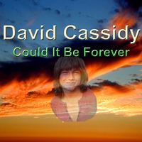 David Cassidy - Could It Be Forever