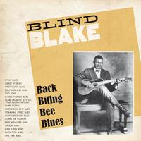 Blind Blake - Blind Blake : Back Biting Bee Blues