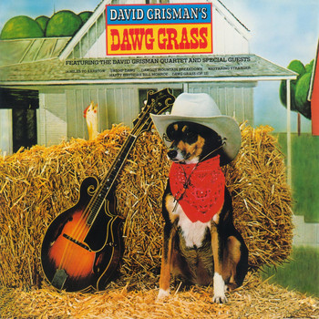 David Grisman - Dawg Grass