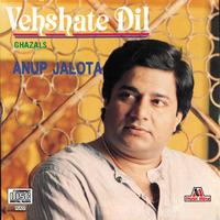 Anup Jalota - Vehshate Dil
