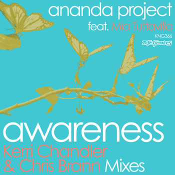 Ananda Project - Awareness