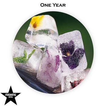 Various Artists - One Year