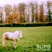 Slime - Increases
