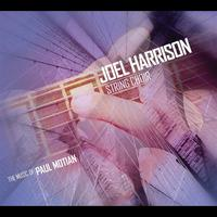 Joel Harrison - The Music of Paul Motian