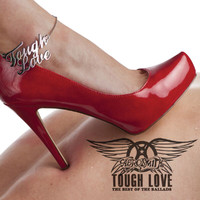 Aerosmith - Tough Love: Best Of The Ballads (International Version)