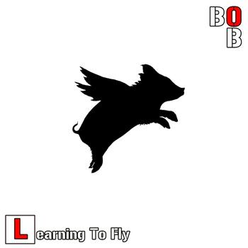 Bob - Learning to Fly (Explicit)