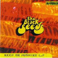 The Black Seeds - Keep on pushing