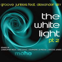 Evan Landes (Groove Junkies) - The White Light PT. 2 (feat. Alexander Sky)