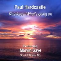 Paul Hardcastle - Rainforest/What's Going On (feat. Marvin Gaye) [Soulful House Mix]