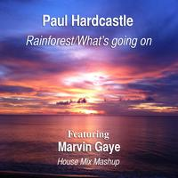 Paul Hardcastle - Rainforest/What's Going On (feat. Marvin Gaye) [House Mix Mashup]