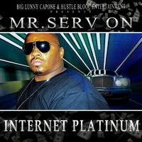 Mr. Serv-On - Internet Platinum