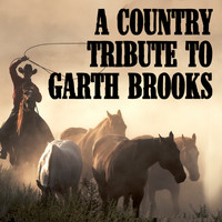 Brooks Stars Garth - Friends in Low Places
