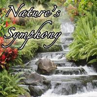 Genesis - Nature's Symphony: Music from Outdoors, Nature, Environment, Earth, and Life