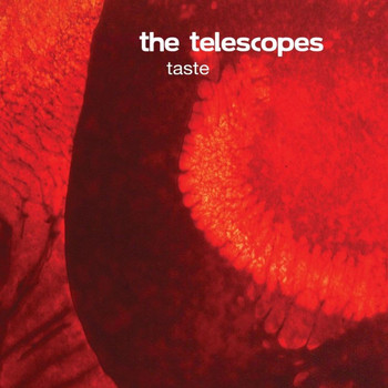 The Telescopes - Taste + The Perfect Needle EP