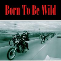 Harley Davidson - Born To Be Wild