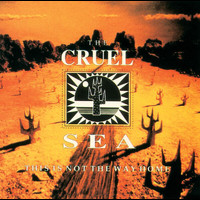 The Cruel Sea - This Is Not The Way Home