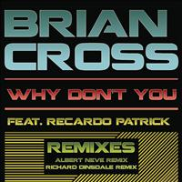 Brian Cross - Why Don't You (Remixes)