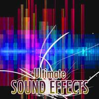 Sound Effects - Sound Effects