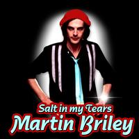 Martin Briley - Salt In My Tears