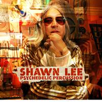 Shawn Lee - Psychedelic Percussion