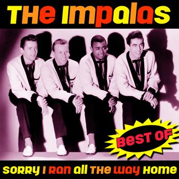 The Impalas - Sorry (I Ran All The Way Home) - Best Of