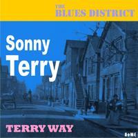 Sonny Terry - Terry Way