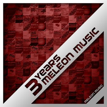 Various Artists - 3 Years Meleon Music