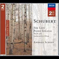 András Schiff - Schubert: The Late Piano Sonatas