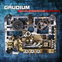 Gaudium - Session Of Progression