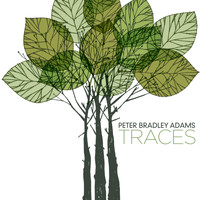 Peter Bradley Adams - Traces