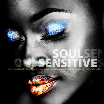 Various Artists - Soul Sensitive Vol.1