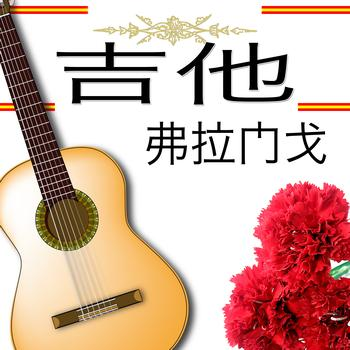 Various flamenco guitarrist - 吉他 弗拉门戈