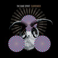 The Duke Spirit - Surrender