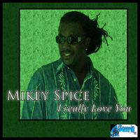 Mikey Spice - I Really Love You