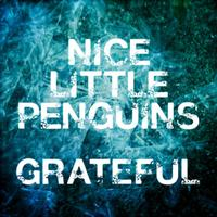 Nice Little Penguins - Grateful