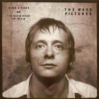 The Wave Pictures - In Her Kitchen