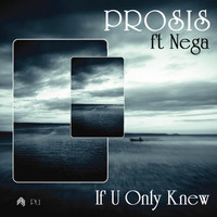 Prosis - If U Only Knew Remixes (Part 1)