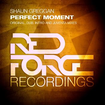 Shaun Greggan - Perfect Moment