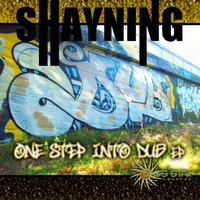 Shayning - Shayning - One Step into Dub EP