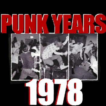 Various Artists - The Punk Years : 1978