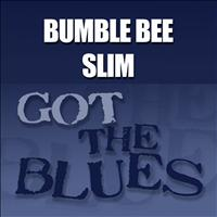 Bumble Bee Slim - Got The Blues