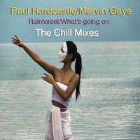 Paul Hardcastle - Rainforest/What's Going On (The Chill Mixes)