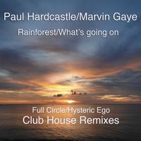 Paul Hardcastle - Rainforest/What's Going On  (Club House Remixes)